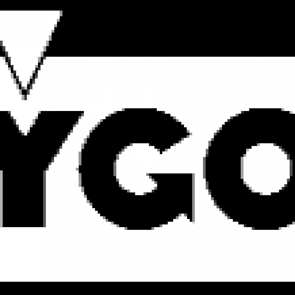 logo-Vygon-White-300px